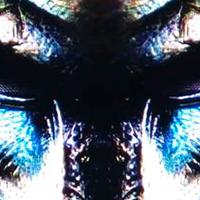 Predator EA eurusd mt4