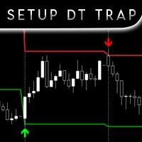 Setup DT Trap