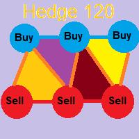 Hedge 120