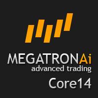 Megatron Core 14