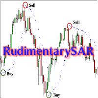 RudimentarySAR