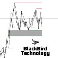 Black Cryptex