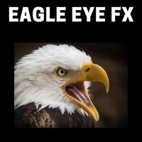 Eagle Eye Fx