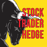 Stock Trader Hedge MT5