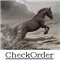 CheckOrder
