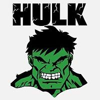 Portfolio HULK