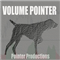 Volume Pointer DEMO