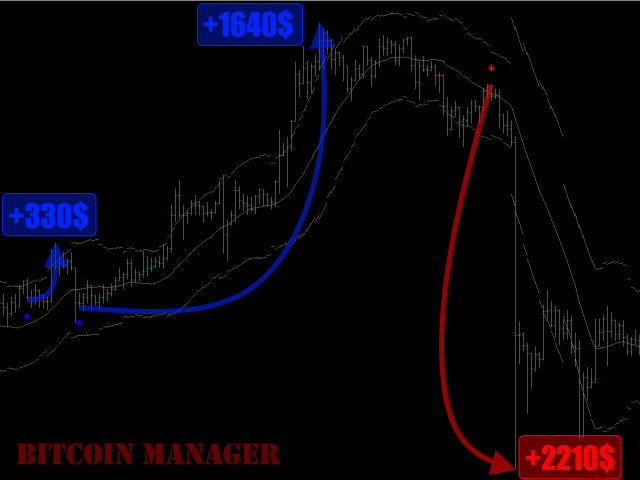 Bitcoin Manager MT5