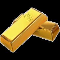 FS Gold