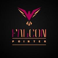 Falcon pointer 20