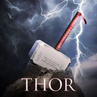 Thor Advisor