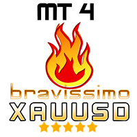 EA Bravissimo XAUUSD h1 for Optimization