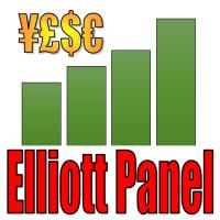 Elliott Panel