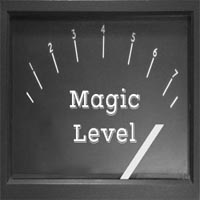 Magic Level