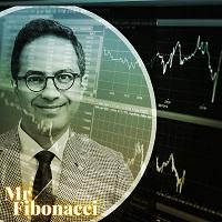 Mr Fibonacci Robot