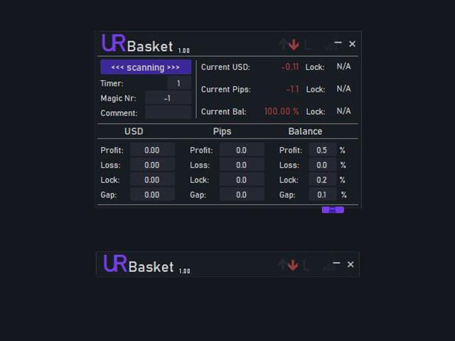 UR Basket