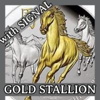 Gold Stallion