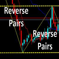 Reverse pairs