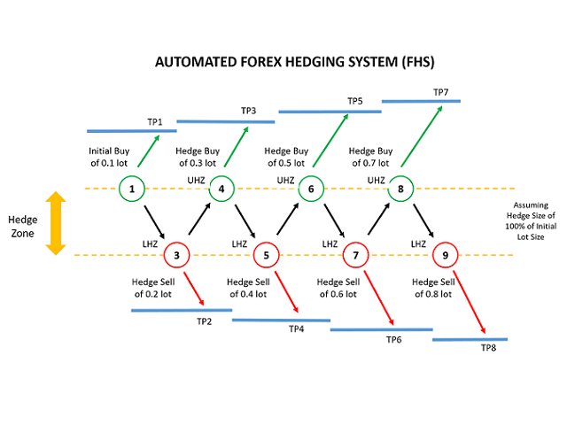 Automated Forex Hedging System