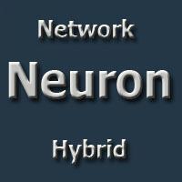 Network Neuron Hybrid