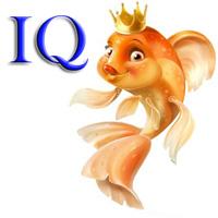 IQtrawler MT4