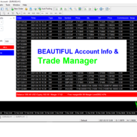 Trade Manager and Account Info