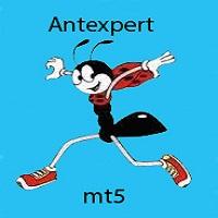 Antexpert mt5