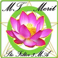 MT Merit Sto Filter 3MA Demo