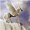 Pegasus The Winged White Horse