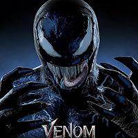 Night Venom MT5