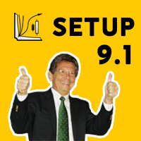 Setup 91 Larry Williams