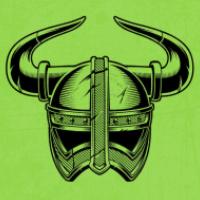 Last Viking MT4