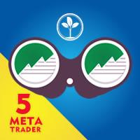 Filter MT5
