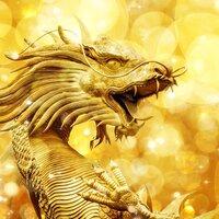Gold Charizard