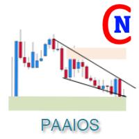 Netsrac PAAIOS