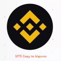 MT5 TO Biannce copy