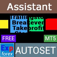 Exp Assistant 5