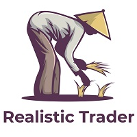 Realistic Trader