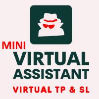 Virtual Assistant MINI