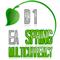 EA Spring Pro D1 multicurrency