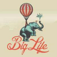 Big life MT5