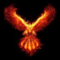 PhoenixCHF