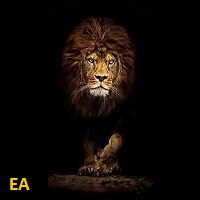 Price Action EA MT4