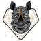 Rhino Scalper EA