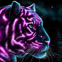 Tiger Lite