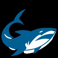 Blue Shark Mt5
