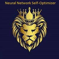 Neutal Network Self Optimizer