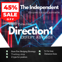 The Direction1 Surefire Hedging strategy