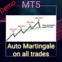 Auto Martingale Demo