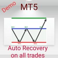 Auto Recovery Zone Demo